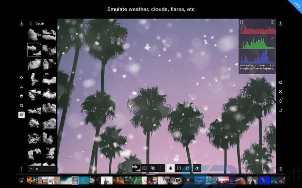 Free Download Polarr Photo Editor 5.6.0 for Mac _ Offline
