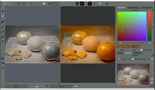 CODIJY Colorizer Pro 4 Free Download
