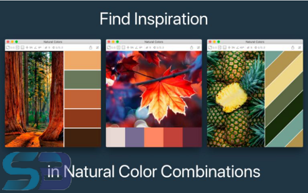 Color Palette from Image for macOS free download