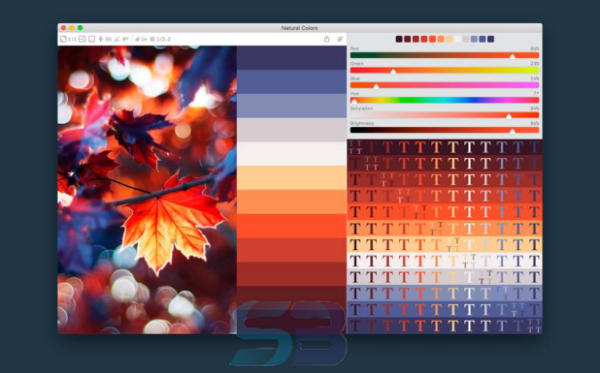 Download Color Palette from Image Pro 2.1 free