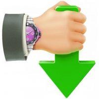 free download Internet Download Accelerator Pro 6 Offline