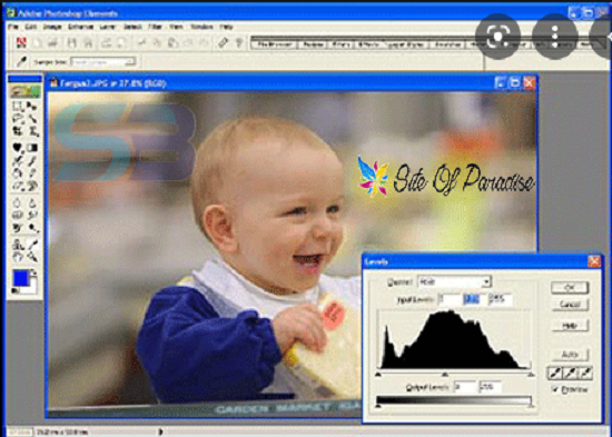 download Adobe Photoshop 7.0 for PC zip file free